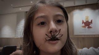 عنكبوت طلع من فمها!!!