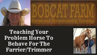 Teaching Your Problem Horse To Behave For The Farrier/Trimmer