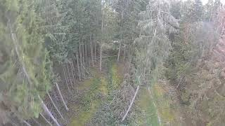 Eachine Cvatar FPV GERMANY my Wood is a perfekt Chillout Zone #sturm #egal !