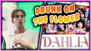 (G)I-DLE - 'DAHLIA' Lyrics [Color Coded_Han_Rom_Eng] Reaction