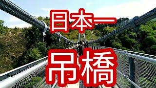 閲覧注意日本一の吊り橋!大分九重夢大吊橋を渡ってきました!
