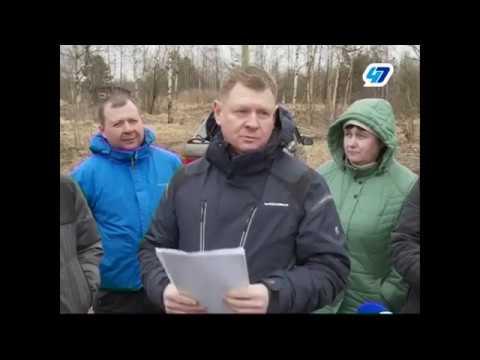 Валуны и болота - выделенные земли многодетным Ленобласти