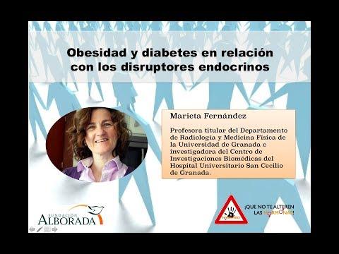 Diabetes mellitus primer tipo