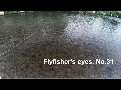 "[HD] Pale Chub Fly Fishing ""Flyfisher's eyes. No.31"""