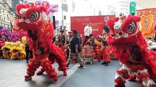 2020 World Dragon & Lion Dance Day 世界龍獅日 @ Pavilion Kuala Lumpur