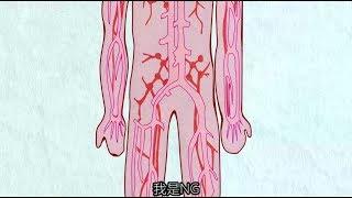 【NG】來介紹一部我的細胞,想認識妳的細胞的動畫《工作细胞》