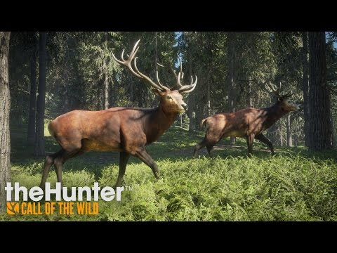 theHunter: Call of the Wild - Gameplay Trailer thumbnail