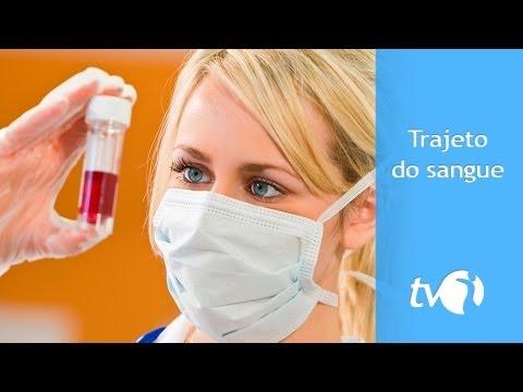 Normas testes de açúcar no sangue
