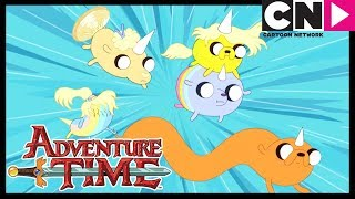 Adventure Time | Jake's Pups Save Him | Jake The Dad | Cartoon Network