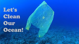 How YOU Can Help CLEAN The OCEAN!: 4 Ocean - Conservation Spotlight