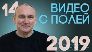 Сезон 2019. 13 и 19 травня
