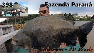 Grandes Tambacus na Fazenda Paraná - Fishingtur na TV 398