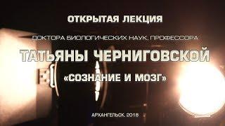"""Открытая лекция профессора Татьяны Черниговской """"Сознание и мозг"""""""