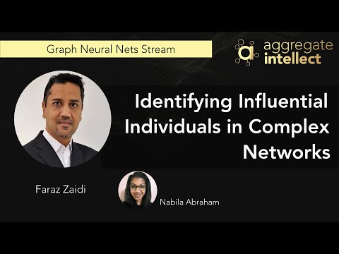 Identifying Influential Individuals in Complex Networks: An Overview