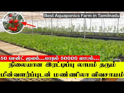 Farming/hybrid все видео по тэгу на igrovoetv online
