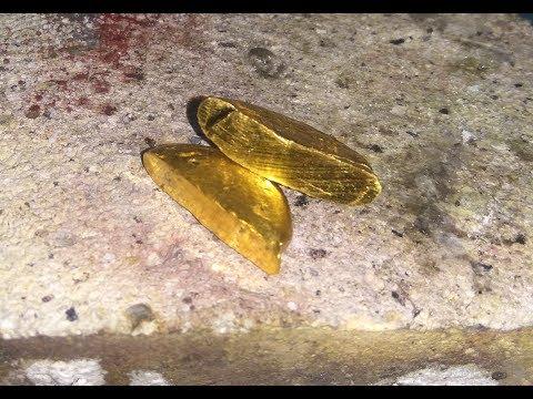 Плавим 21 грамм золота
