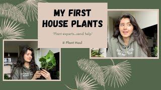 My 1st House Plants