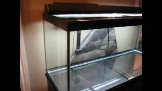 NEW 75 Gallon Cichlid Aquarium | Setting up! | Kholo.pk