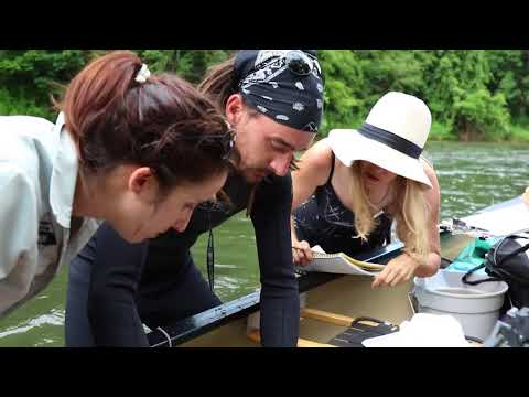 Experiential Learning: Hellbender Research
