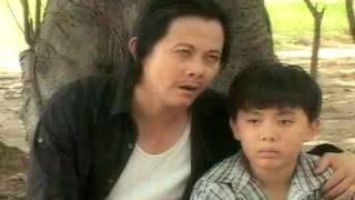 VUONG MINH CANH MUA LANH THAO CAM VIEN