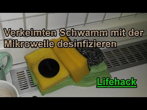 Spülschwamm in der Mikrowelle desinfizieren – Büro Küchen Lifehack !