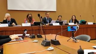 Carlos Moreira at the United Nations Human Rights Meeting - part 2