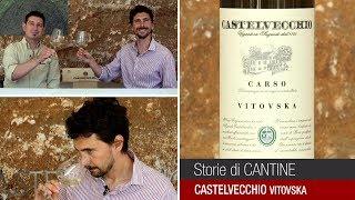 Degustazione del Vitovska da Castelvecchio