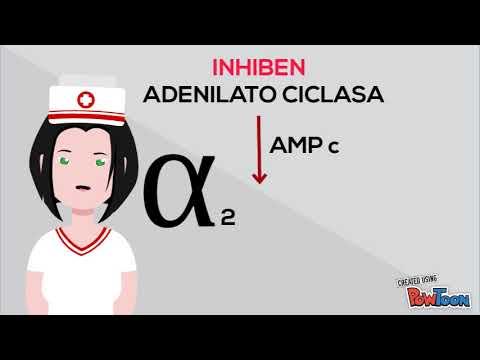 Amputación de los pies en pacientes con diabetes mellitus de vídeo