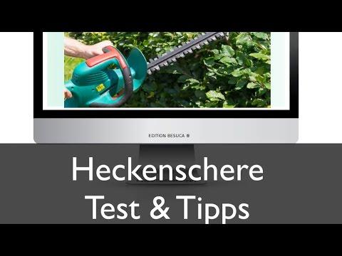 Heckenschere Test und Tipps | Kauf und Anwendung