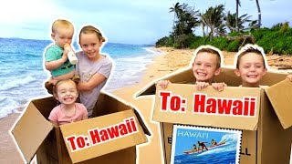 WE MAILED OURSELVES OVERSEAS TO HAWAII AND IT WORKED! (skit) | Kids Fun TV | Family Vacation