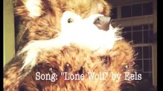 Lone Wolf - Eels