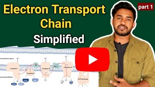 Electron transport chain / ETC / Oxidative phosphorylation/ energy production / chalk talk Tutorial