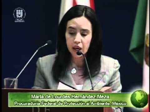 Desarrollo de las leyes ambientales y de su aplicación en los tres países