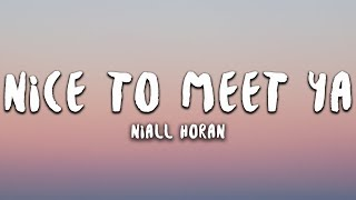 Niall Horan   Nice To Meet Ya (Lyrics)