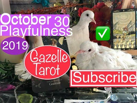 October 30 2019 Daily Tarot Reading ✅ Freedom & Playfulness ❤️ #tarot #tarotreading #tarotreader