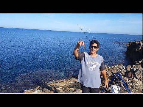 Frecce di arbalest per pesca