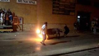 preview picture of video 'Toros en Moncada ★ NEW ★'