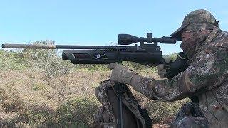 Umarex Gauntlet  22cal PCP Air Rifle Review - Самые лучшие видео