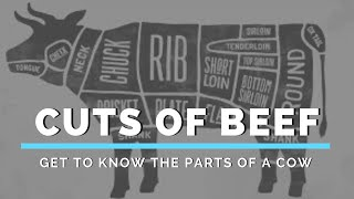 Cuts of Beef (Get to Know the Parts of a Cow)