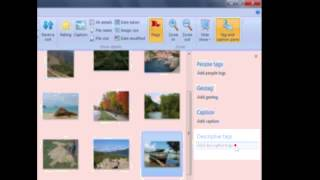 Using Descriptive Tags in Photo Gallery