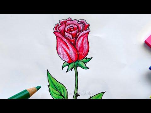 , title : 'Malen lernen: Rose - Blumen zeichnen lernen für Anfänger mit Bleistift & Bunststiften  🌹