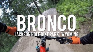 Bronco is a real fun flow trail with a good gradient that doesn't require much braking therefore the trail is kept in superb condition.  The berms are well designed enabling good entrance and exit speed but with some surprises thrown in to keep you on you