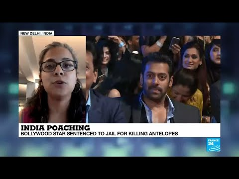 India: Bollywood superstar Salman Khan sentenced to 5 years of jail for killing protected antelopes