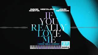 David Guetta x MistaJam x John Newman - If You Really Love Me [MistaJam remix]