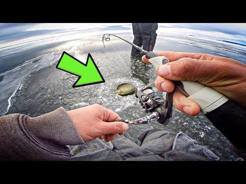 Isfiskeri efter regnbueørred og stalling