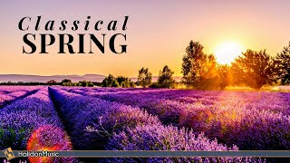 Spring Classical Music - Video Youtube
