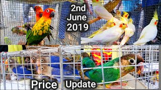 current prices of different birds - Free video search site