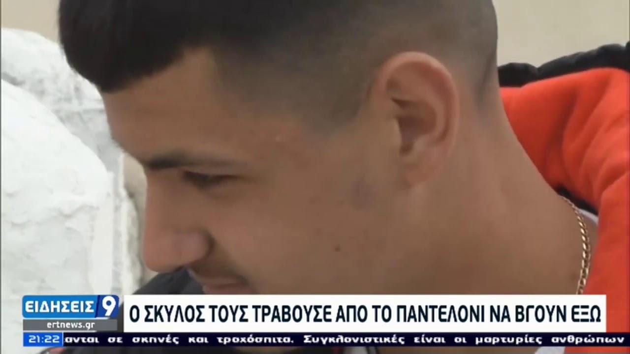 Γριζάνο Τρικάλων   Ο σκύλος τους έσωσε απο τον σεισμό   07/03/2021   ΕΡΤ