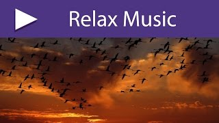 3 HOURS Easy Listening Music to Free Your Mind from Worries and Breathe Deeply