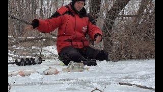 Зимняя плотва ловля на безмотылку